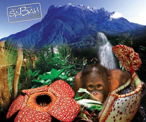 Sabah Friendship Tour (Dinner Briefing)
